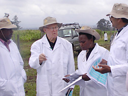 Nobel Peace Prize winner consulting with Kenyan and CIMMYT leaders near wheat plots in Kenya: Click here for full photo caption.