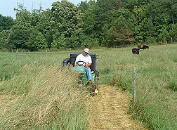 At an experimental field site in Oconee County, Georgia, technician Steven Knapp cuts a test plot to determine hay yield: Click here for photo caption.