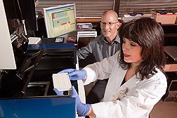Molecular geneticist Robert Waterland and technician Eleonora Laritsky measure DNA methylation to determine how it changes the activity of genetically identical cells: Click here for photo caption.