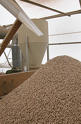 Biomass pellets produced from the die shown at left: Click here for full photo caption.