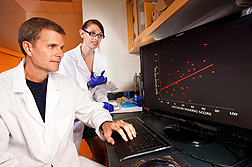 Nutrition scientist Kevin Laugero and biologist Rashel DeCant observe data that show a correlation between brain function and amount of weight lost: Click here for photo caption.
