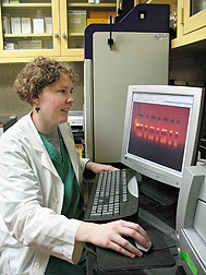 Microbiologist Erica Spackman reviews results of a reverse transcription polymerase chain reaction test to determine whether there is virus in a sample and to generate material for gene sequencing: Click here for photo caption.