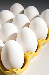 Agricultural Research Service and Princeton University scientists have developed a better, faster way to pasteurize eggs: Click here for photo caption.