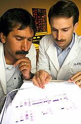 Physiologists examine purification results on calpastatin. Click here for full photo caption.