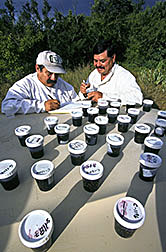 Technician Jesus Maldonado (left) and chemist Raul Rivera record ID's on bee samples collected from colonies.