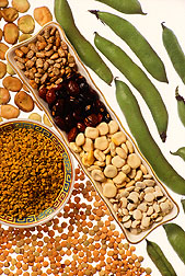 Photo: Eight different legumes. Link to photo information