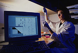 Scientist withdraws DNA from bacteria taken from soil infected with wheat take-all. Click for full photo caption.
