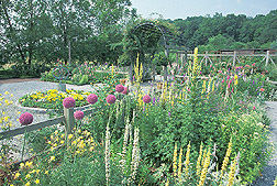 View of the National Herb Garden: Click here for full photo caption.