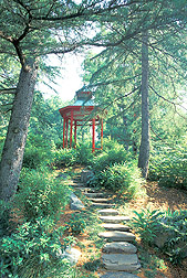 Photo: A picturesque view of the Asian Valley, one of many beautiful gardens at the Agricultural Research Service's U.S. National Arboretum. Link to photo information