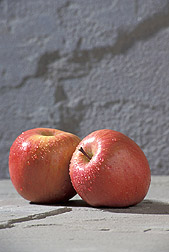 Photo: Methyl jasmonate helps deepen the blush on the cheeks of Fuji apples. Link to photo information