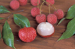 Peeled and unpeeled lychee fruit: Click here for full photo caption.