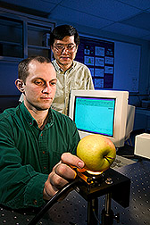 Engineering technician and agricultural engineer take near-infrared spectra from an apple: Click here for full photo caption.