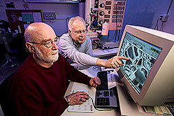 Roy Gingery and Dave Fulton use scanning electron microscope to help identify pathogens in corn from Serbia. Link to photo information