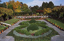 The Knot Garden located within the National Herb Garden: Click here for full photo caption.