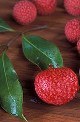 Photo: Lychee. Link to photo information