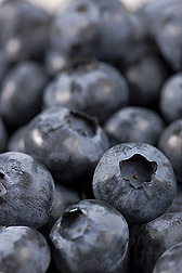 Fresh blueberries: Click here for photo caption.