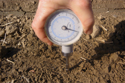 Photo: A geotester being used to measure the strength of soil crust. Link to photo information