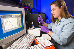Technician Jacky Carnahan determines the quality and amount of DNA used for gene haplotype determination: Click here for photo caption.