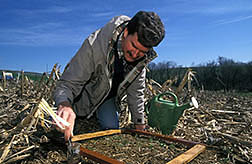 Soil scientist Martin Shipitalo collects worms for identification. Click here for full photo caption.