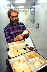Mycologist David Farr examines fungi. Click here for full photo caption.