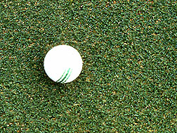 Photo: Golf ball on a putting green of bermudagrass. Link to photo information