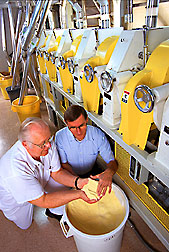 The quality of semolina from durum milled in the pilot mill is evaluated. Click here for full photo caption.