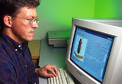 Entomologist looks at the Stored Grain Advisor program on a computer monitor: Click here for full photo caption.