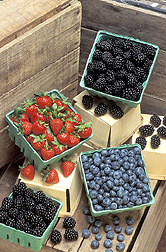 A variety of berries: Click here for full photo caption.