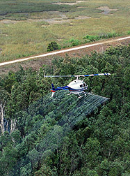 Aerial herbicide applications: Click here for full photo caption.