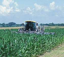 A high-clearance sprayer: Click here for full photo caption.