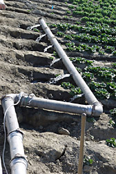 Photo: A fertigation system used on romaine lettuce in Coachella Valley, California. Link to photo information
