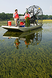 Two men aboard an airboat collect hydrilla from Lake Seminole. Link to photo information