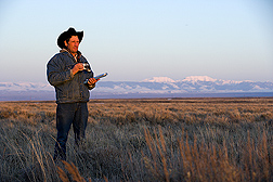 In the early morning, University of Idaho manager of sheep operations and range resources records male and female sage grouse numbers as the birds congregate on leks: Click here for full photo caption.