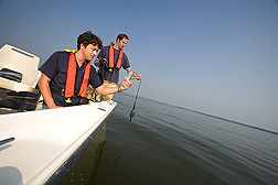 Along the Choptank River, boat captain (right) (NOAA National Ocean Service, Cooperative Oxford Laboratory) tests water quality at various depths while ARS research associate collects water samples for nitrogen and phosphorus analysis: Click here for full photo caption.