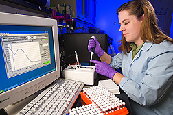 Technician determines the quality and amount of DNA used for prion gene haplotype determination: Click here for full photo caption.