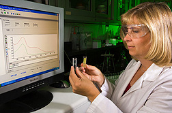 Technician performs spectrophotometric analysis of a yellow zein solution (right) and decolorized and deodorized zein (left): Click here for full photo caption.