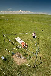 At the High Plains Grasslands Research Station in Cheyenne, Wyoming, ecologist (lying on the board) and plant physiologist measure plant heights and download soil water content data to determine water's role in mediating plant responses to warming and elevated carbon dioxide: Click here for full photo caption.