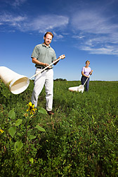 Entomologist and technician use sweep nets to collect beneficial insects in an agricultural habitat: Click here for full photo caption.