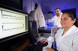 Photo: ARS molecular biologist Jesse de León and technician Marissa González perform a DNA analysis of Asian citrus psyllids. Link to photo information
