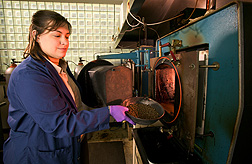 In New Orleans, technician Renee Bigner places poultry litter pellets into a furnace to make biochar via slow pyrolysis: Click here for photo caption.