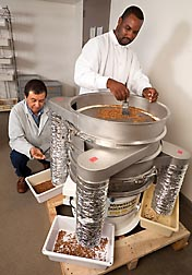 Entomologist Juan Morales-Ramos (left) and insect production worker Matthew McDaniel use a scaled-down prototype of a separator they designed to sort mealworms by size: Click here for photo caption.