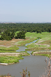 A section of the Prado Wetland, part of the vast network of waterways in the Santa Ana River Watershed: Click here for full photo caption.