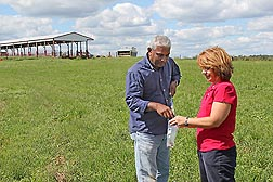 ARS microbiologist Kim Cook (right) and Western Kentucky University soil scientist Annesly Netthisinghe collect soil samples from a 5-acre experimental feedlot in western Kentucky for analysis of nutrients, antibiotics, and microorganisms: Click here for photo caption.