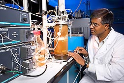 At the ARS Bioenergy Research Unit in Peoria, Illinois, chemical engineer Nasib Qureshi observes and controls a fermentor in which butanol is produced from corn stover and recovered simultaneously with a vacuum.