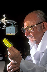 Chemist Jay Fox, Jr., checks for riboflavin reaction products. Click here for full photo caption.