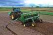 Planting foxtail millet