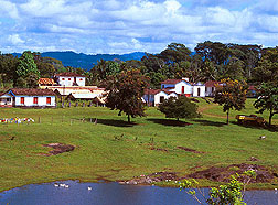A small farm near Urucuca, Brazil.