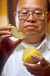 Chemist Dominic W.S. Wong holds freshly sliced apple. Link to photo information