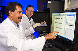 USMARC director and microbiologist review a gel image of PCR results to identify virulence factors in E. coli O157:H7 isolates from cattle hide samples: Click here for full photo caption.