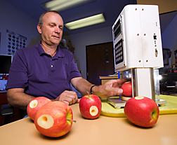 Technician uses a recording penetrometer to measure apple firmness, a key component of apple fruit quality: Click here for full photo caption.